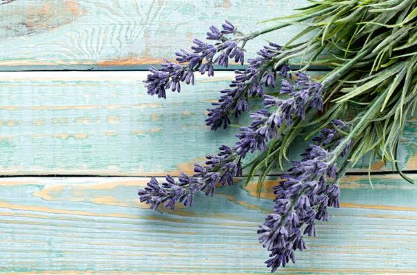 Dried Lavender Flowers